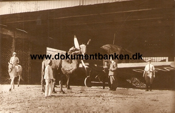 Junckers Fly i Hangar ved Tbilisi - Carte Postale 1928